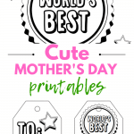 Mother's Day gift ideas and gift note card printables